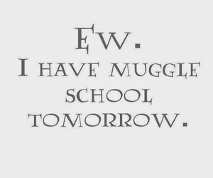 school, harry potter, and muggle image