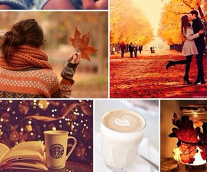 autumn, books, and Collage image