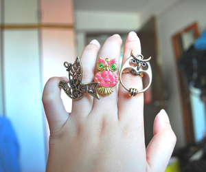 owl, pink, and rings image