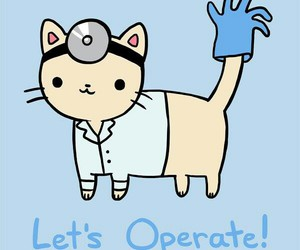 cat, doctor, and cute image