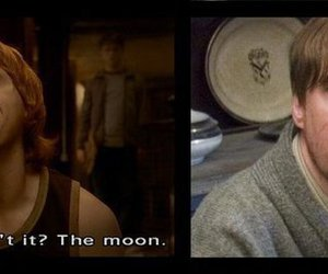 harry potter, ron weasley, and moon image