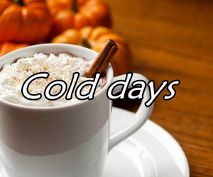 autumn, fall, and cold days image