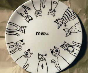 cat, meow, and plate image