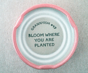 bloom, cap, and nature image