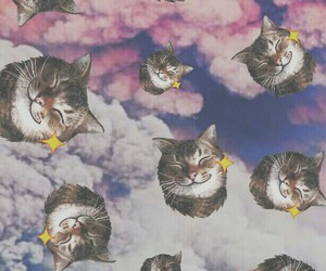 cats, clouds, and Collage image