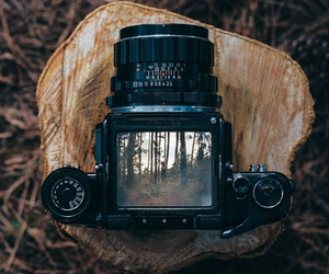 camera, photography, and nature image
