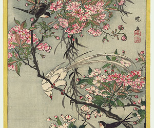 birds, cherry blossom, and swallows image