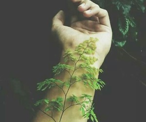 green, nature, and hand image