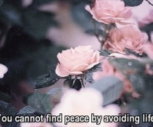 life, quotes, and flowers image