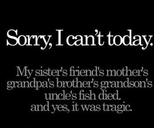 funny, sorry, and fish image