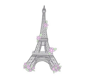 overlay, flowers, and paris image