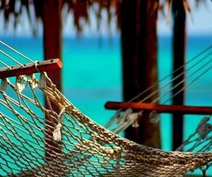 hammock, ocean, and relax image