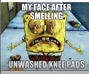 volleyball and knee pads image