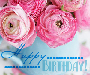 congratulations, flowers, and happy birthday image