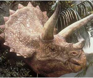 <3, dino, and triceratops image