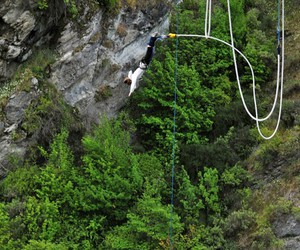 bungy jump and bungyjump image