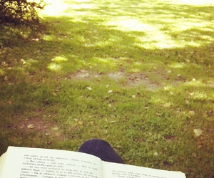 autumn, book, and grass image