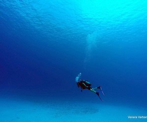diving, ocean, and sand image