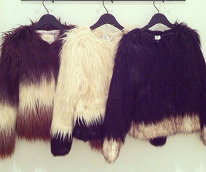 coat, fuzzy, and fur image