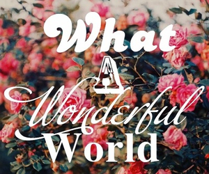 wonderful, world, and flowers image