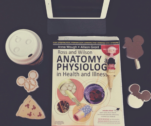 anatomy, college, and medical image