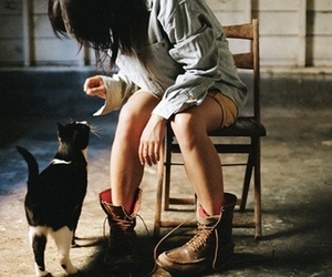 boots and cat image