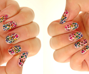 colorful, leopard, and rainbow image
