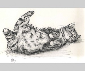 art, beauty, and cat image