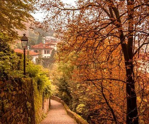 autumn and italy image