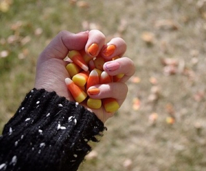 autumn, quality, and tumblr image