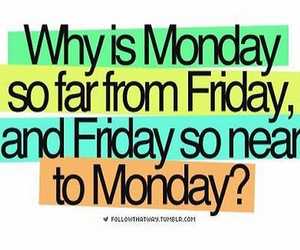 friday, monday, and why image