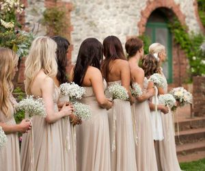 wedding, bridesmaid, and dress image