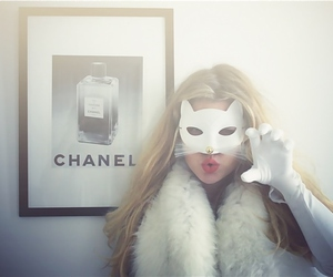 chanel, fashion, and cat image