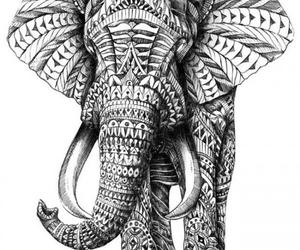 elephant, drawing, and art image
