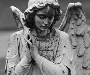 angel, black and white, and statue image