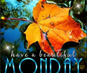 autumn, day, and monday image