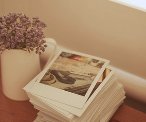 flowers, photo, and polaroid image