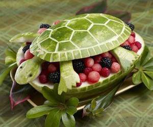 turtle, fruit, and watermelon image