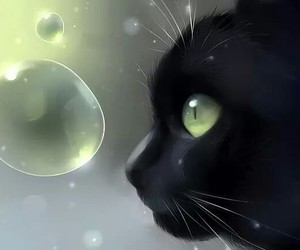 cat, art, and bubbles image