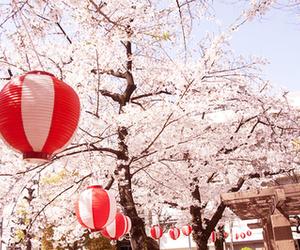japan, asia, and beautiful image