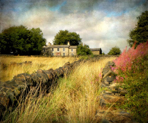 art, house, and nature image