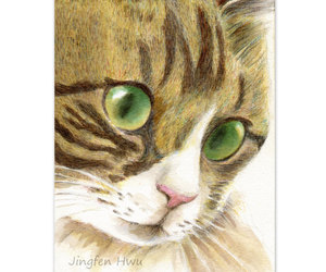 cat, cat art, and green eyed cat image