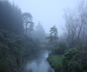 grunge, indie, and nature image