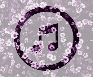 flower, flowers, and music image