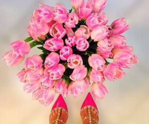 amazing, fashion, and pink image