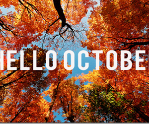 fall, hello, and october image
