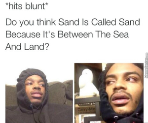 funny, land, and sand image