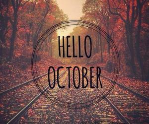 autumn, orange, and sweater weather image