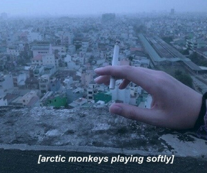alone, music, and arctic monkeys image