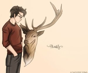 couple, sirius black, and lily evans image